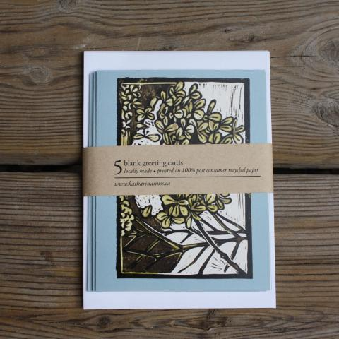 Pack of 5 cards showing hydrangea with snow