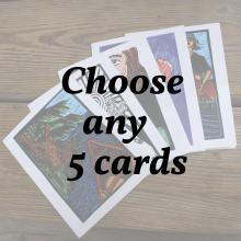 Choose any 5 cards