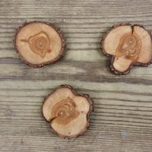 3 Willow Tree Branch Magnets
