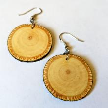 one pair basswood branch hook earrings