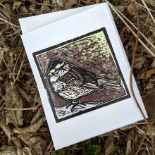 Card showing a white-throated sparrow, with envelope